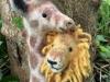 giraffe_lion