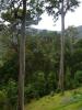 web_costarica_02